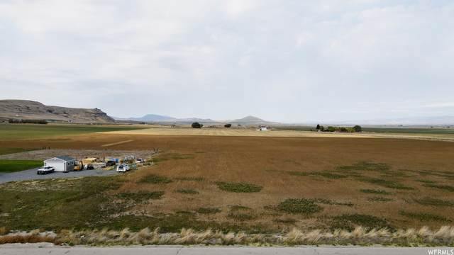 Address Not Published, Petersboro, UT 84325 (#1771932) :: Colemere Realty Associates