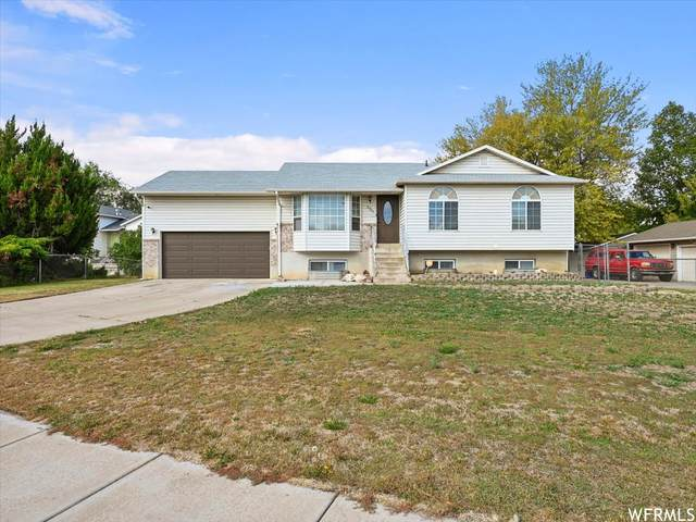5761 S 3260 W, Roy, UT 84067 (#1773063) :: Colemere Realty Associates