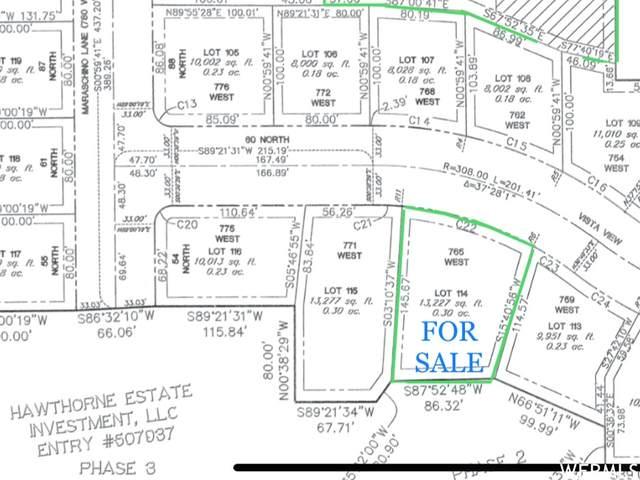 768 Vista Vw, Grantsville, UT 84029 (#1773153) :: Doxey Real Estate Group