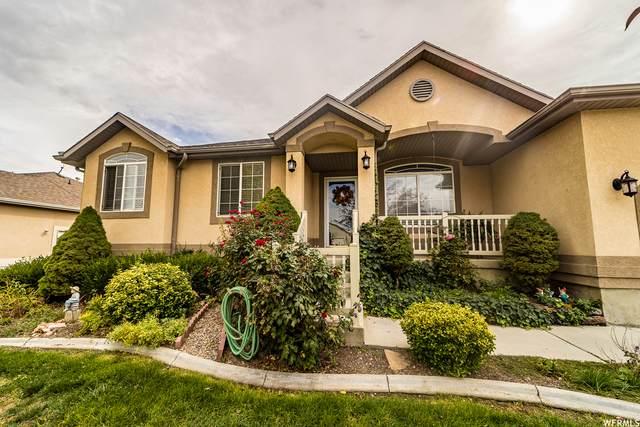 44 E Wildhorse Rd, Saratoga Springs, UT 84045 (#1773396) :: Pearson & Associates Real Estate