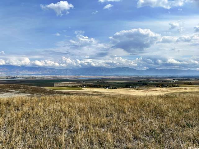 2286 N Valley View W, Petersboro, UT 84325 (#1773633) :: Colemere Realty Associates