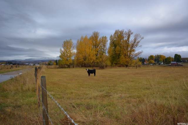 0 Johnson Rd, Montpelier, ID 83254 (MLS #1773861) :: Lookout Real Estate Group