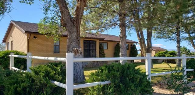 305 W Twin Peaks Rd, Elmo, UT 84521 (#1773896) :: Bear Phelps Group