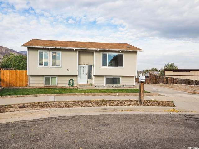 3816 S Belfast Dr W, Magna, UT 84044 (#1774573) :: Doxey Real Estate Group