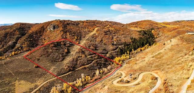 81 W Tollgate Canyon Rd, Wanship, UT 84017 (#1775048) :: Bear Phelps Group