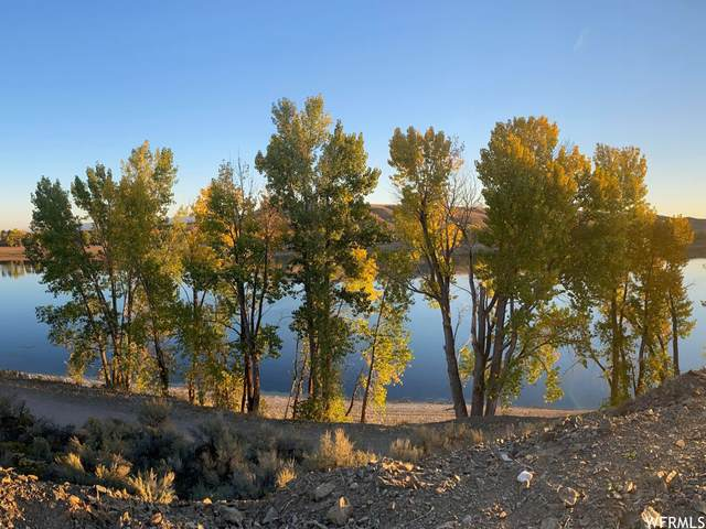 Address Not Published #3, Clifton, ID 83228 (MLS #1775634) :: Lookout Real Estate Group