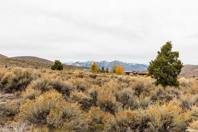 6480 E Mayfly Ct #62, Heber City, UT 84032 (#1775912) :: Utah Real Estate