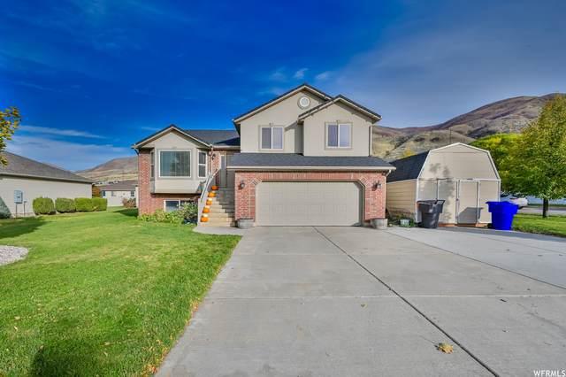 2225 S 425 W, Perry, UT 84302 (#1776014) :: Pearson & Associates Real Estate