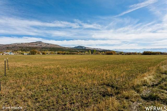 27084 N 11000 E, Fairview, UT 84629 (#1776242) :: Utah Dream Properties