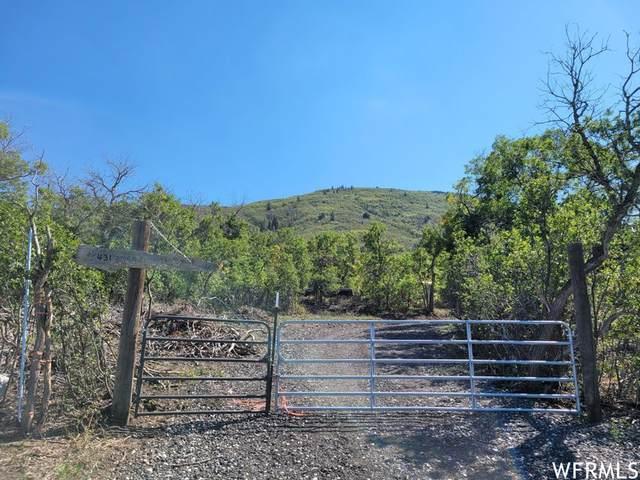 431 Storm Mountain Dr, Indianola, UT 84629 (#1776255) :: Utah Real Estate