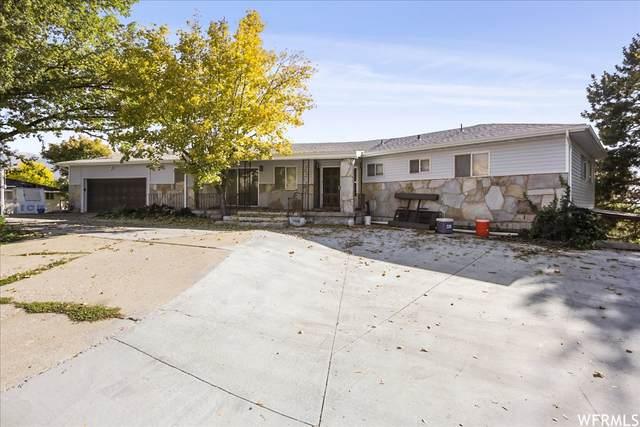 993 W 3800 N, Pleasant View, UT 84414 (MLS #1776439) :: Lookout Real Estate Group