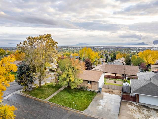 580 S 1250 E, Pleasant Grove, UT 84062 (#1776687) :: The Perry Group