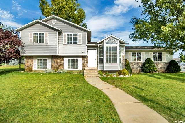 5206 W Edinburgh Ln S, West Jordan, UT 84081 (#1776724) :: Utah Real Estate