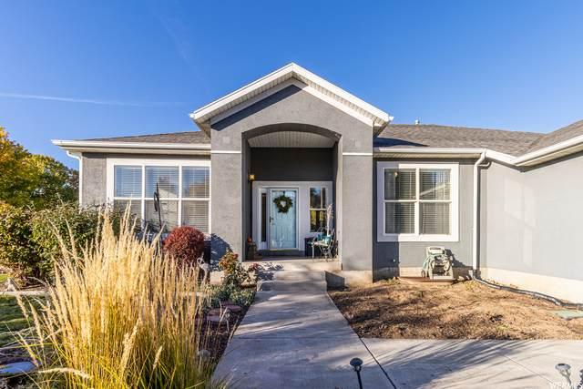 5298 Vista Peak Dr, West Jordan, UT 84088 (#1776841) :: Utah Real Estate