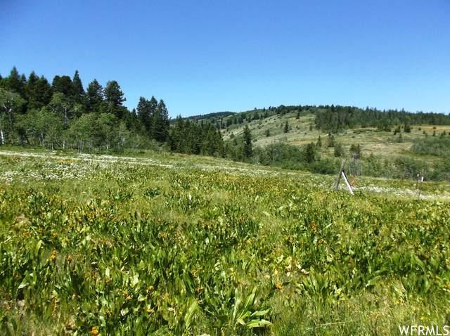 8091 Highway 36, Montpelier, ID 83254 (#1776869) :: Utah Real Estate