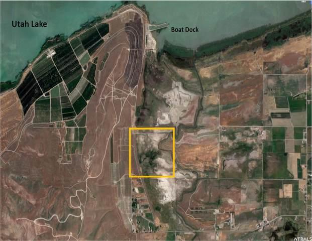 Address Not Published, Benjamin, UT 84660 (#1718736) :: Big Key Real Estate