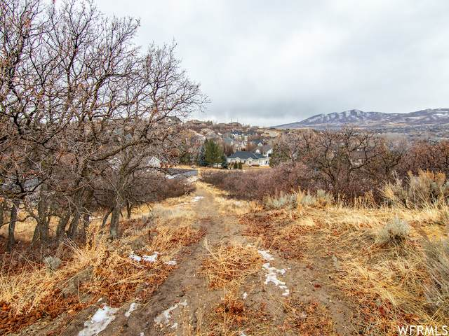 848 E Jackson Ln, Alpine, UT 84004 (#1721694) :: Livingstone Brokers