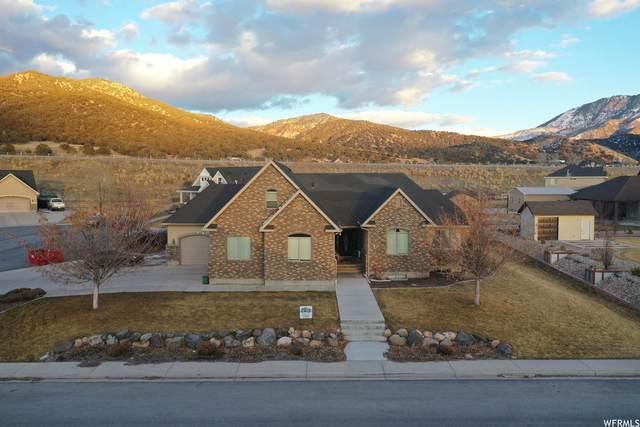 838 N 800 E, Nephi, UT 84648 (#1724744) :: Utah Dream Properties