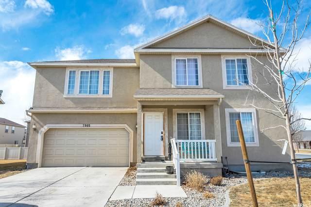 7905 N Cedar Crest Rd, Eagle Mountain, UT 84005 (#1724751) :: Utah Dream Properties