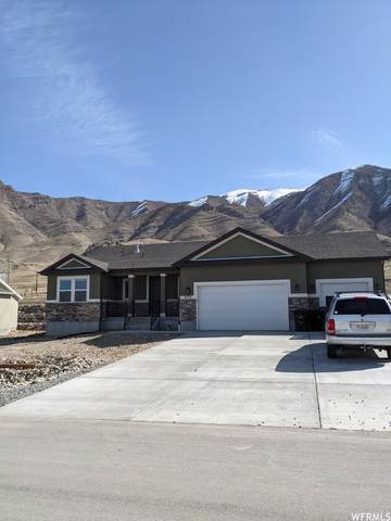 8174 N Iron Horse Dr, Tooele, UT 84074 (MLS #1730518) :: Summit Sotheby's International Realty