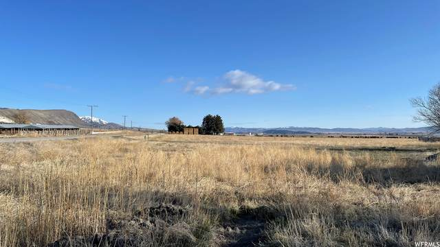 296 W 2ND N, Weston, ID 83286 (MLS #1730612) :: Lookout Real Estate Group