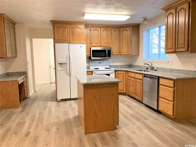 1570 N 520 St W, Mapleton, UT 84664 (#1732478) :: Berkshire Hathaway HomeServices Elite Real Estate