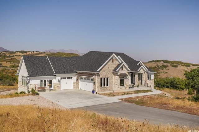 3667 W Ridges Rd, Morgan, UT 84050 (#1734835) :: Villamentor
