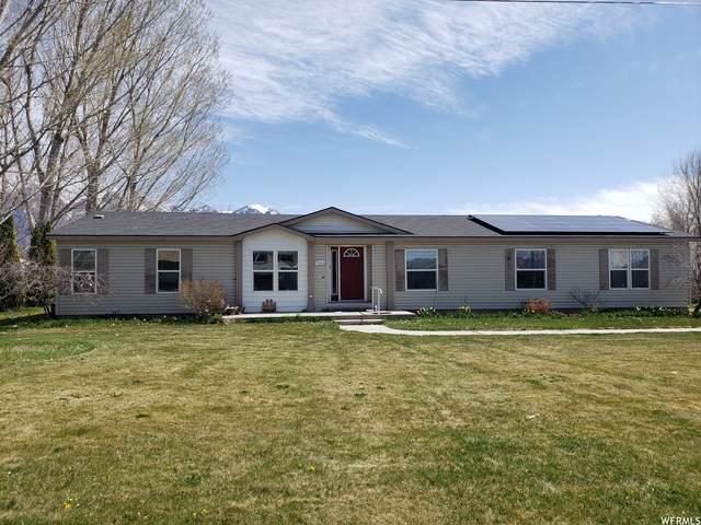 5640 N 4800 W, Bear River City, UT 84301 (#1735242) :: C4 Real Estate Team