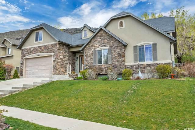 10506 N Colonial Dr, Cedar Hills, UT 84062 (#1738489) :: Bustos Real Estate | Keller Williams Utah Realtors