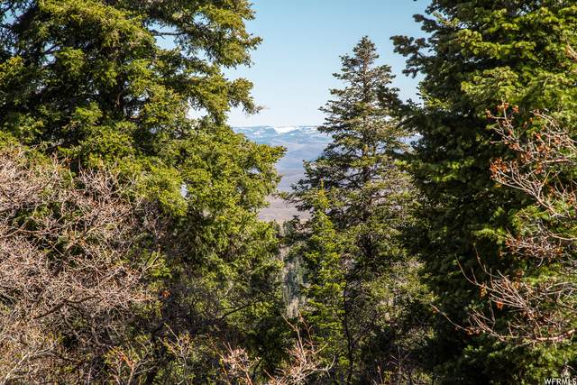 1172 W Maple Pl, Wanship, UT 84017 (MLS #1740995) :: High Country Properties