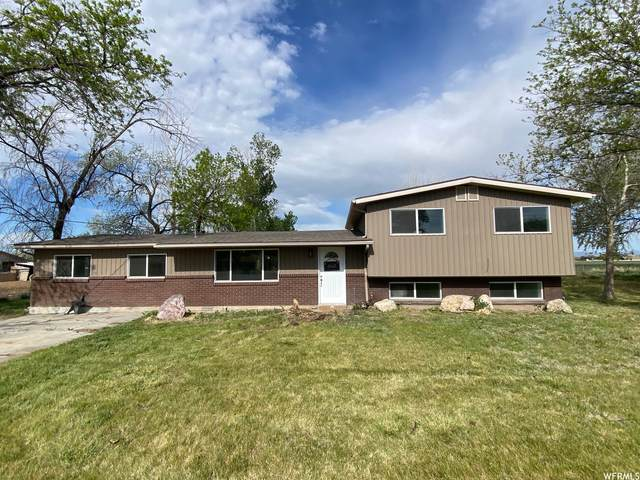 2389 S 4300 W, Taylor, UT 84401 (#1741414) :: Colemere Realty Associates