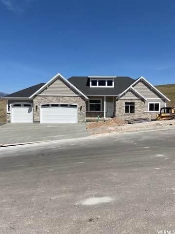870 N Eagle View Dr. #511, Morgan, UT 84050 (#1743129) :: Utah Dream Properties