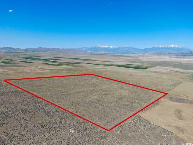 500 S Cedar Valley Rd E, Cedar Fort, UT 84013 (#1745057) :: Utah Real Estate