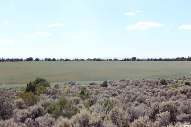 Address Not Published, Monticello, UT 84535 (#1746026) :: Utah Real Estate