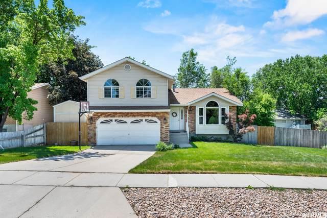 778 E Park Mesa Way S, Sandy, UT 84094 (#1747211) :: Utah Best Real Estate Team | Century 21 Everest