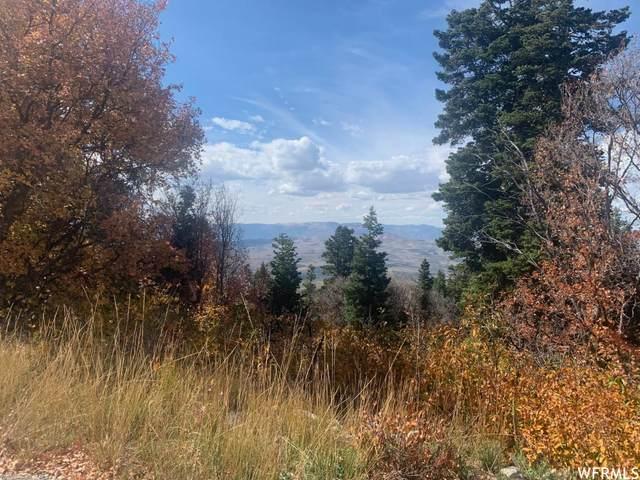 23750 N Davis Ridge Dr E H74, Fairview, UT 84629 (#1749356) :: goBE Realty