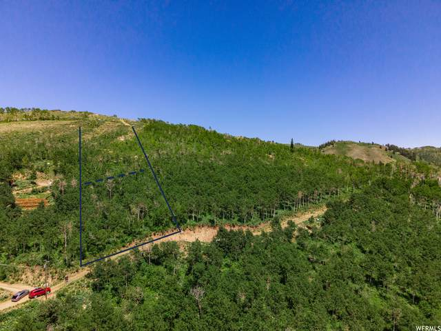 1747 W Mountain Haven Ln #35, Midway, UT 84049 (MLS #1749817) :: High Country Properties