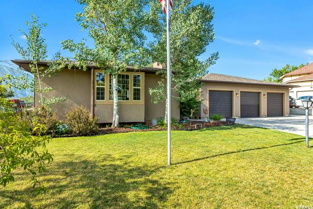 2252 E Sego Lily Dr S, Sandy, UT 84092 (#1751530) :: UVO Group   Realty One Group Signature