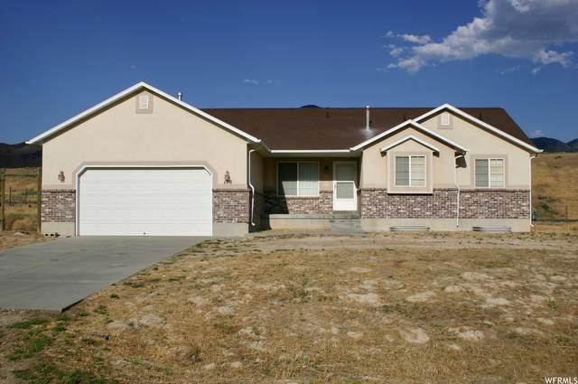 150 N New Saddle Dr, Stockton, UT 84071 (#1754720) :: Powder Mountain Realty