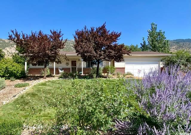 534 Sego Lily Ln, Providence, UT 84332 (#1761985) :: Bustos Real Estate | Keller Williams Utah Realtors