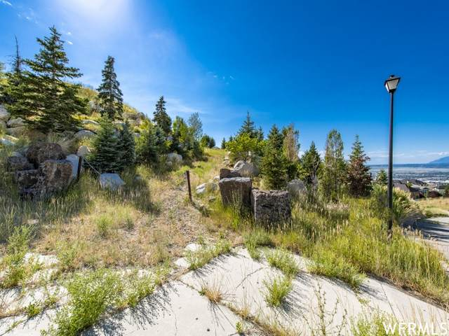 1010 S Plum Tree Ct E #8, North Salt Lake, UT 84054 (#1762682) :: Belknap Team