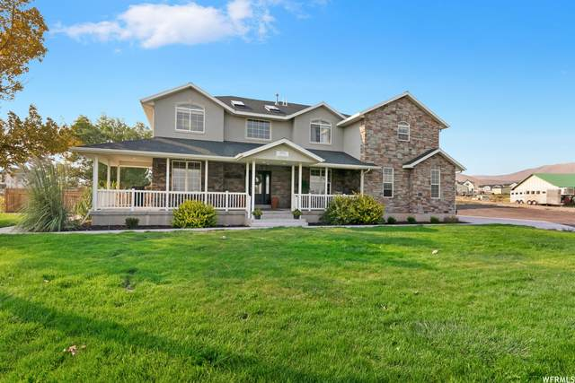 8851 N Cedar Pass Rd, Eagle Mountain, UT 84005 (MLS #1765534) :: Lookout Real Estate Group