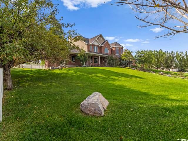 1136 E Lone Peak Ln, Draper, UT 84020 (#1765954) :: Doxey Real Estate Group