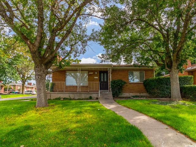 8333 W Aleen Ave, Magna, UT 84044 (#1768204) :: Exit Realty Success