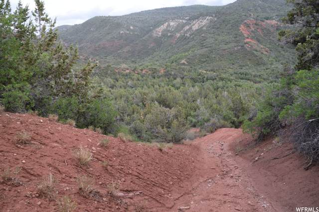 Address Not Published, Levan, UT 84639 (MLS #1769890) :: Lookout Real Estate Group