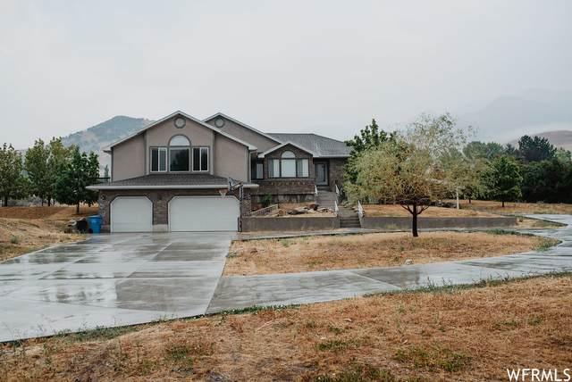 304 N 1000 E, Hyde Park, UT 84318 (#1769902) :: Utah Dream Properties