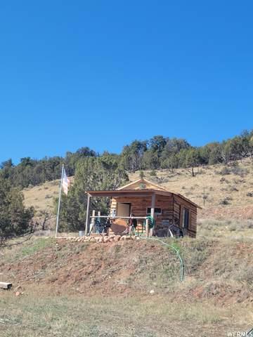 Address Not Published, Fruitland, UT 84027 (#1770236) :: Bustos Real Estate | Keller Williams Utah Realtors