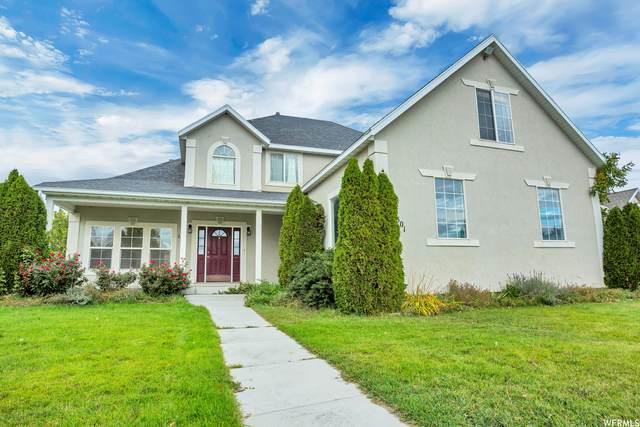 1301 E Falcon Ln N, Eagle Mountain, UT 84005 (MLS #1773445) :: Lookout Real Estate Group