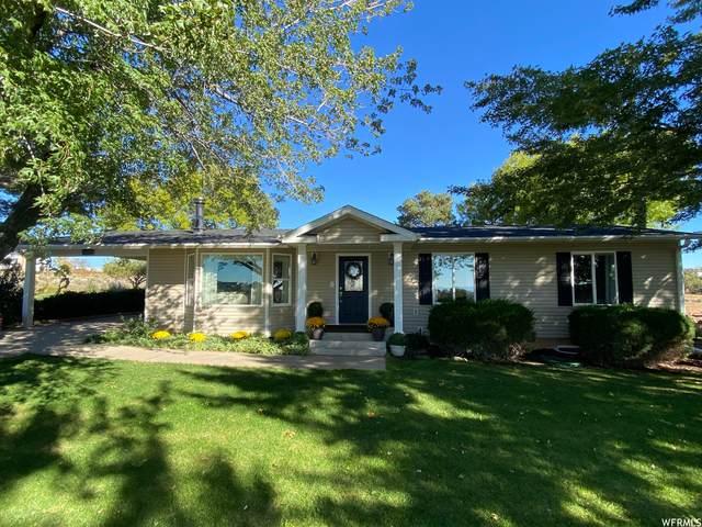 1372 N Blue Mountain Rd, Blanding, UT 84511 (#1774896) :: Utah Dream Properties