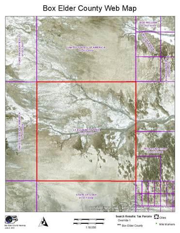 67600 W 12000 S, Grouse Creek, UT 84313 (#1775171) :: Bear Phelps Group